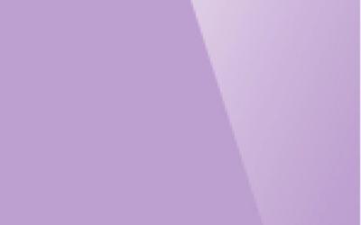 Глянцевый натяжной потолок. Цвет «Глянец 225»