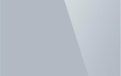 Глянцевый натяжной потолок. Цвет «Глянец 313»