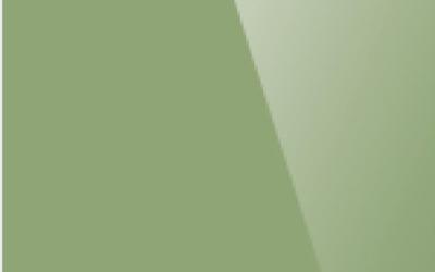 Глянцевый натяжной потолок. Цвет «Глянец 614»