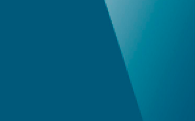Глянцевый натяжной потолок. Цвет «Глянец 636»