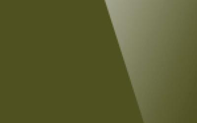 Глянцевый натяжной потолок. Цвет «Глянец 638»