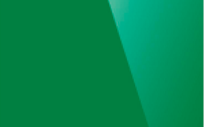 Глянцевый натяжной потолок. Цвет «Глянец 666»